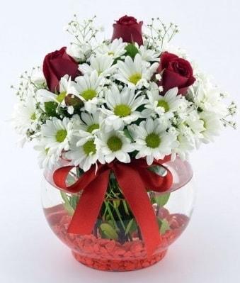 Fanusta 3 Gül ve Papatya  Hatay çiçek mağazası , çiçekçi adresleri