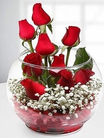 Kırmızı Mutluluk fanusta 9 kırmızı gül  Hatay çiçek servisi , çiçekçi adresleri