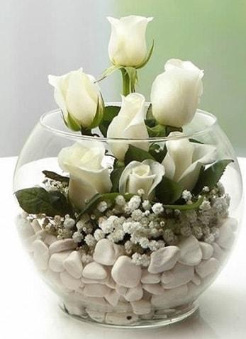 Beyaz Mutluluk 9 beyaz gül fanusta  Hatay çiçek servisi , çiçekçi adresleri
