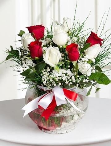 Aşk Küresi  5 beyaz 5 kırmızı gül fanusta  Hatay çiçek mağazası , çiçekçi adresleri