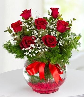 fanus Vazoda 7 Gül  Hatay 14 şubat sevgililer günü çiçek