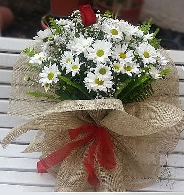 Papatya 1 adet kırmızı gül buketi  Hatay kaliteli taze ve ucuz çiçekler