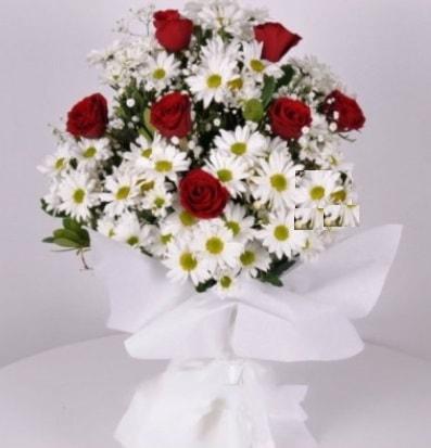 7 adet kırmızı gül ve papatyalar krizantem  Hatay çiçek mağazası , çiçekçi adresleri