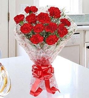 12 adet kırmızı karanfil buketi  Hatay internetten çiçek siparişi