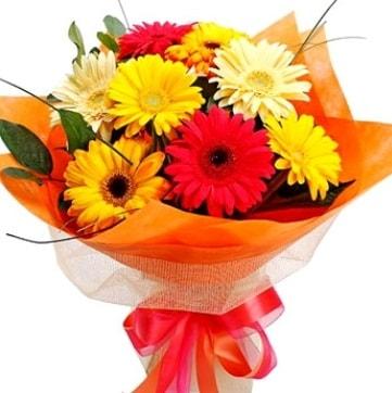 9 adet karışık gerbera buketi  Hatay 14 şubat sevgililer günü çiçek