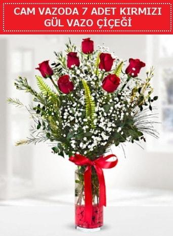 Cam vazoda 7 adet kırmızı gül çiçeği  Hatay çiçek siparişi vermek