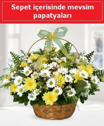 Sepet içerisinde mevsim papatyaları  Hatay anneler günü çiçek yolla