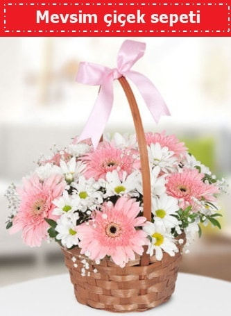 Mevsim kır çiçek sepeti  Hatay 14 şubat sevgililer günü çiçek